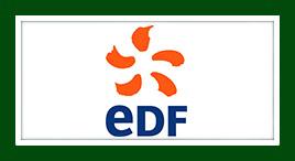 EDF Démász Zrt.