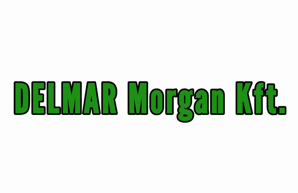DELMAR Morgan Kft.